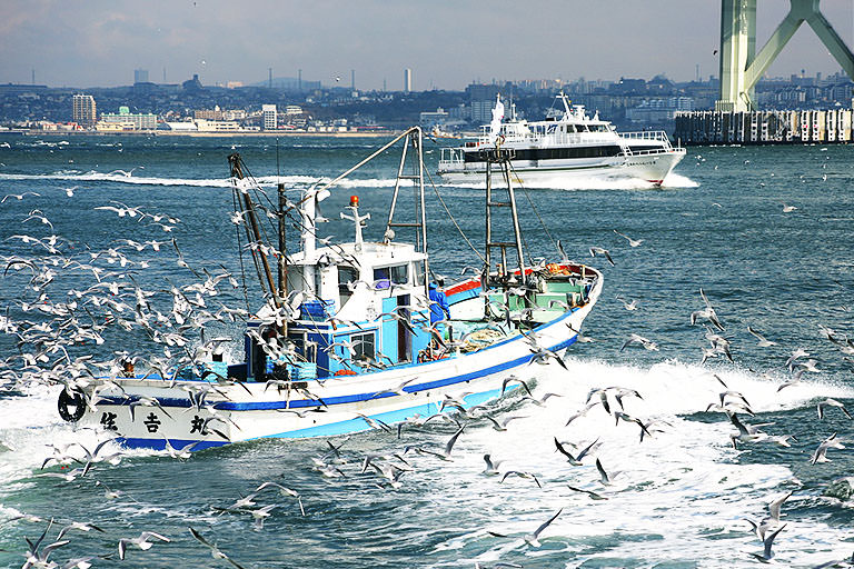 経験や勘ではなくデータで効率化を〜テクノロジーでシフトする漁業のあり方の未来